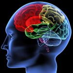 Differences between similar pediatric brain conditions